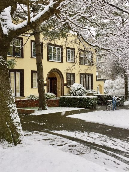 Building/snow